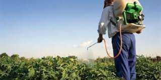 «المبيدات والأسمدة» تعوّل على 7 مستجدات للتعافى