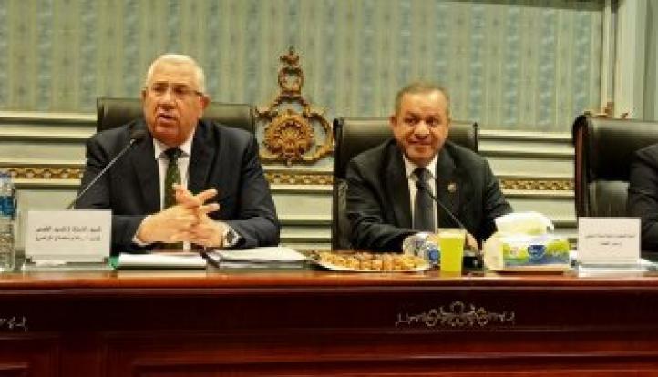 وزير الزراعة: توجيهات من الرئيس السيسى لتحقيق الأمن الغذائى للمواطنين